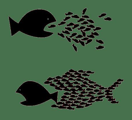 Egalité – Fraternité Solidarité – Modernité